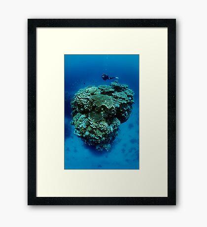 On Dizzy Height Framed Print
