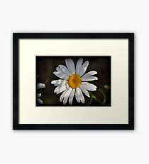 Glimmer Of Light Framed Print