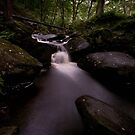 Padley Gorge by Julie-anne Cooke Photography