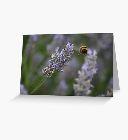 Windy Business Greeting Card
