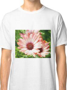 Macro Pink Cinnamon Tradwind Daisy Flower in the Garden Classic T-Shirt