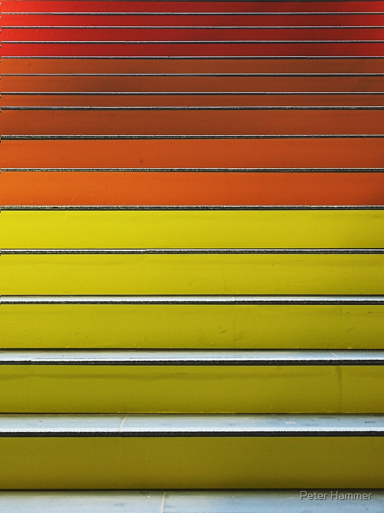 Warm Stripes by Peter Hammer
