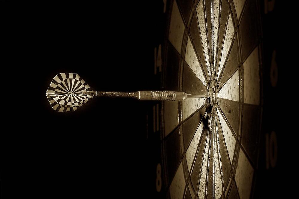 Bullseye by Janet Rogerson