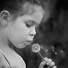 Lilly And The Dandelion by Janet Rogerson