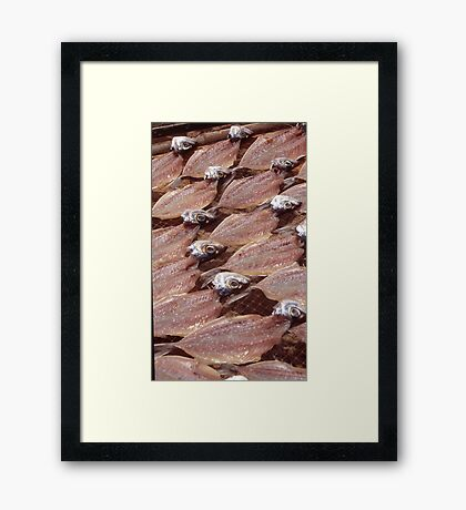 Sardines Drying In The Sun Framed Print