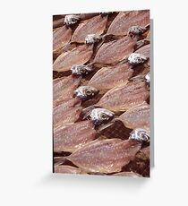 Sardines Drying In The Sun Greeting Card
