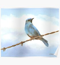 Bird On A Wire Poster