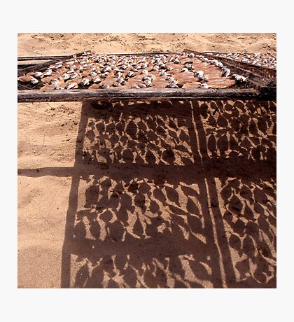 Sardine's Drying in The Sun Photographic Print