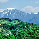 Tignale. Italy. by Daidalos