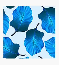 Tropical Leaves Pattern in Blue Photographic Print
