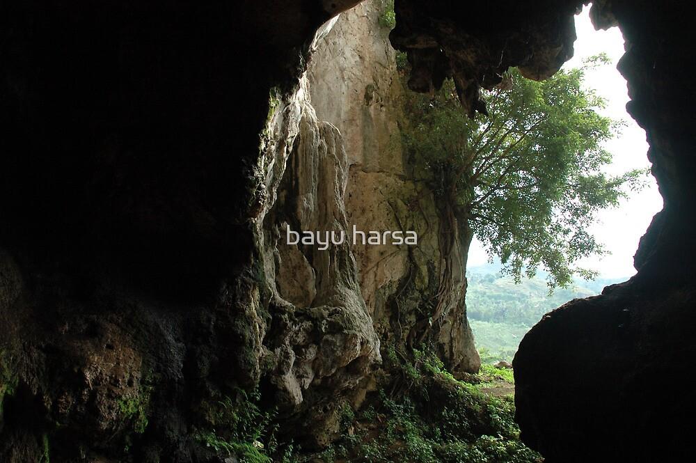 pawon cave by bayu harsa