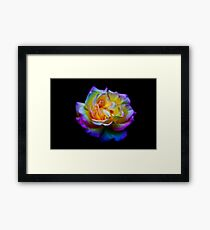 Multi-colour Framed Print