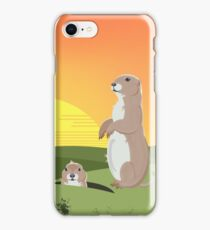 Prairie Sunset iPhone Case/Skin