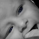 Baby Blue Eyes by Tim Wright