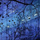 Trees and building by laurentlesax