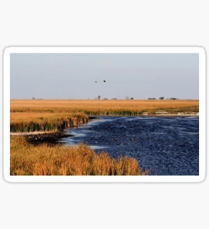 Autumnal Morning on the Marsh Sticker