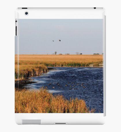 Autumnal Morning on the Marsh iPad Case/Skin