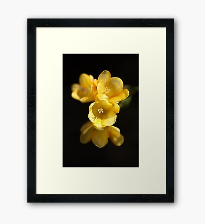 Dressed In Yellow Framed Print