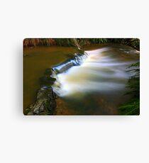 """Little Creek"" Canvas Print"