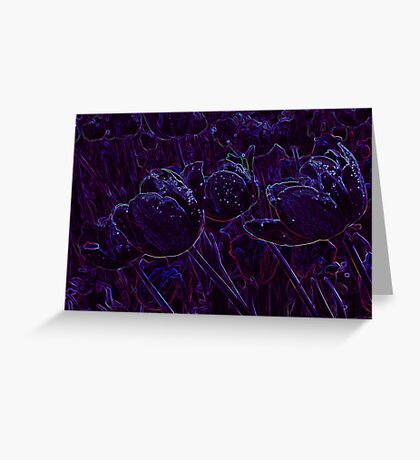 Tulip Glow Greeting Card