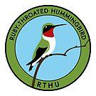 Ruby-throated Hummingbird by JadaFitch