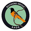 Baltimore Oriole by JadaFitch