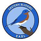 Eastern Bluebird by JadaFitch