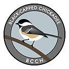 Black-capped Chickadee by JadaFitch