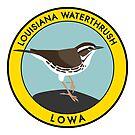Louisiana Waterthrush by JadaFitch