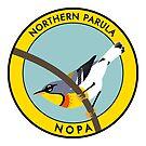 Northern Parula by JadaFitch