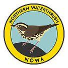 Northern Waterthrush by JadaFitch