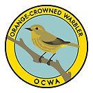 Orange-crowned Warbler by JadaFitch