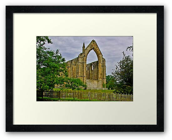 Bolton Abbey by Trevor Kersley