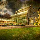 Glasshouse - Botanic Gardens - Dublin by Gerry Chaney