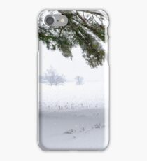 Pine Tree Framing Snow Scene iPhone Case/Skin