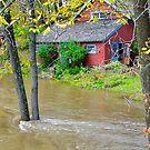 10 Mile River Flood von TJ Baccari Photography