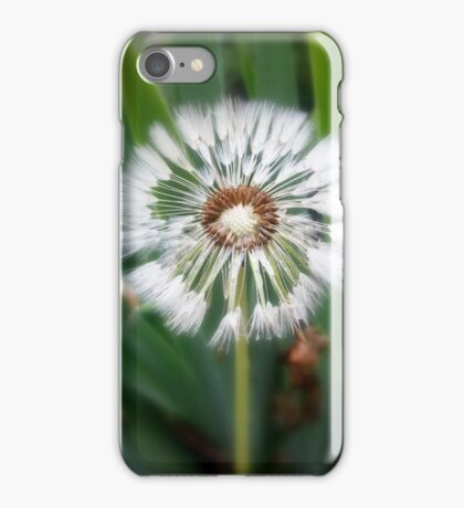 Dandelions to be iPhone Case/Skin