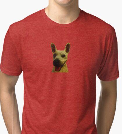 Smiling Jeff Tri-blend T-Shirt