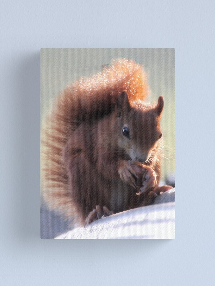 Alternate view of Red Squirrel Canvas Print
