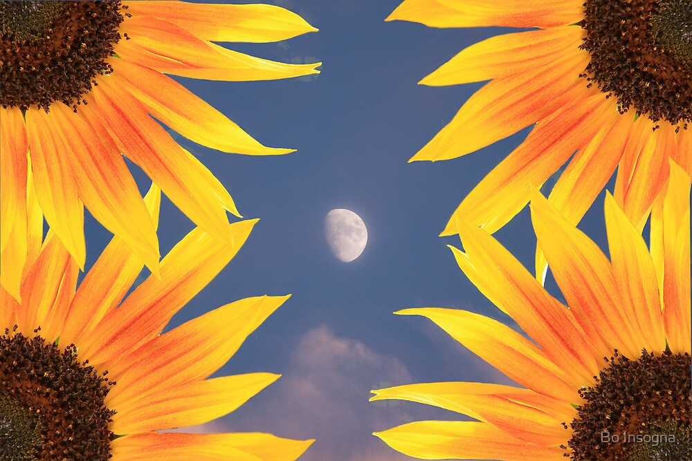 Moon and Sunflowers by Bo Insogna