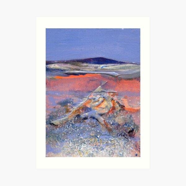 Shadows of Pink- Lake King,Western Australia Art Print
