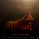 the red wolf by james smith