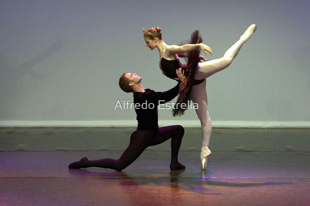 Black Swan - Courtship by Alfredo Estrella