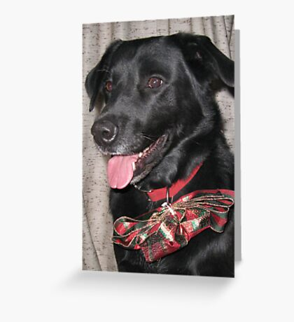 The Old Yule Dog Greeting Card