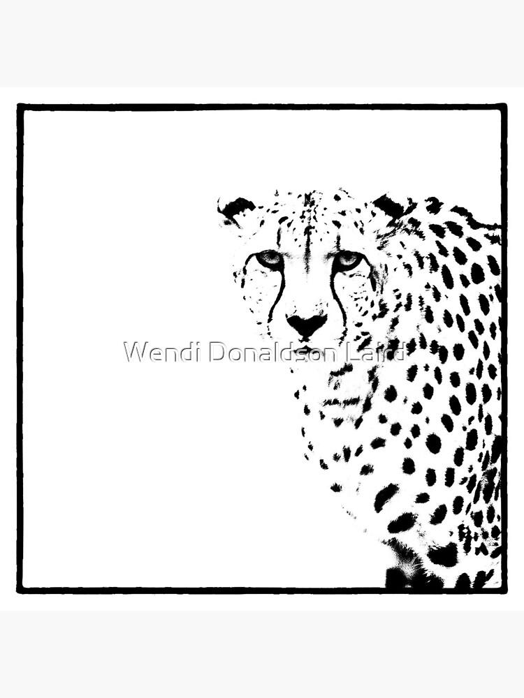 Cheetah by wdonaldson
