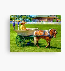 Nanny Cart Canvas Print