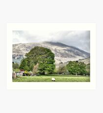 Scotch landscape Art Print