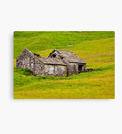 Ruined Barn Canvas Print