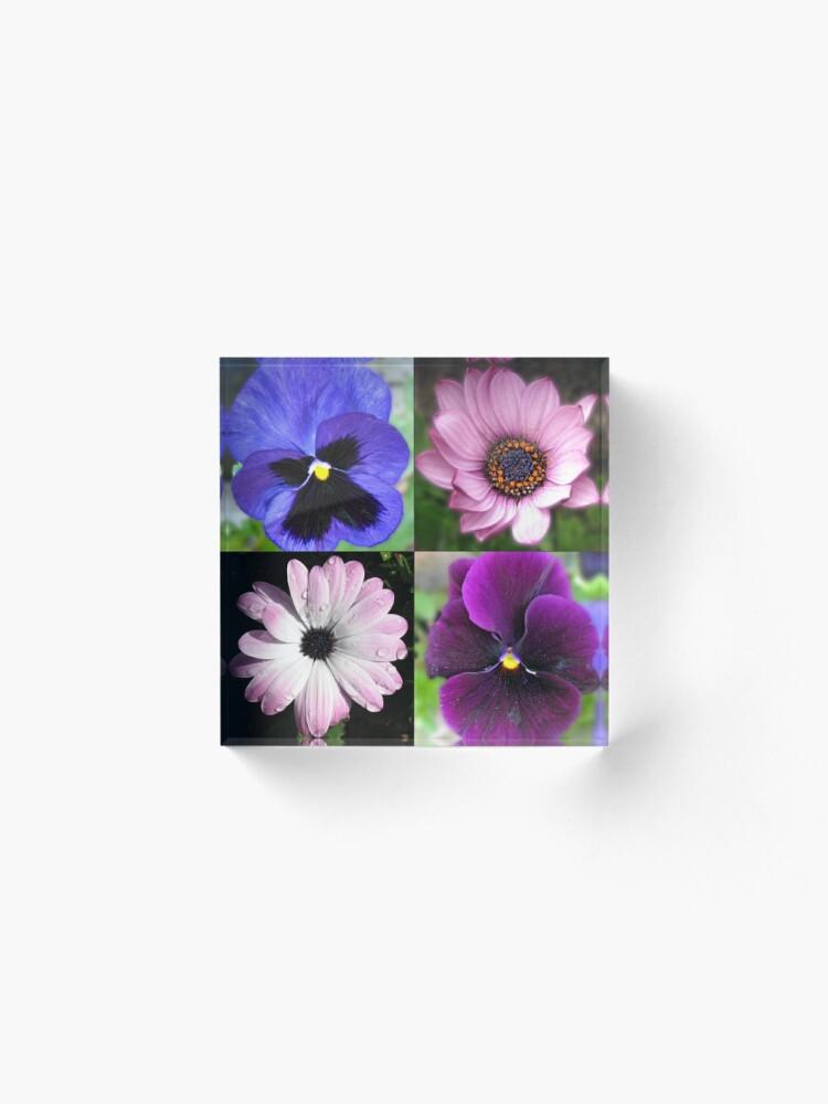 Alternative Ansicht von Cute Pansies and Daisies Collage Acrylblock