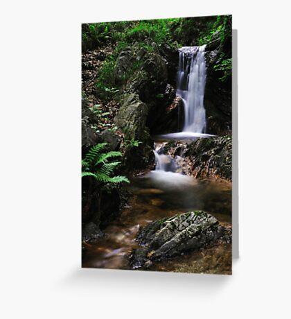 Torrent, Liro Valley V Greeting Card